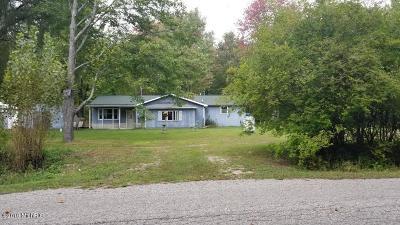 Oceana County Single Family Home For Sale: 2438 W Lake Road