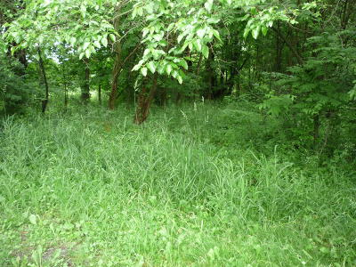 Branch County Residential Lots & Land For Sale: Wright Road