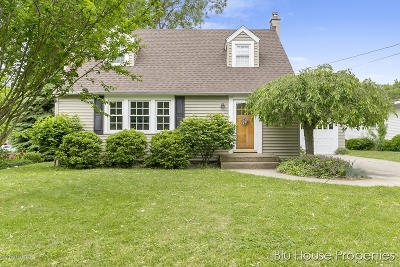 Grand Rapids Single Family Home For Sale: 55 Lawndale Avenue NE