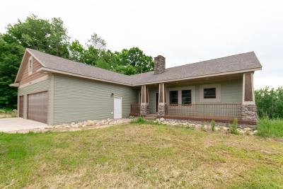 Kent County Single Family Home For Sale: 3570 20 Mile Road NE