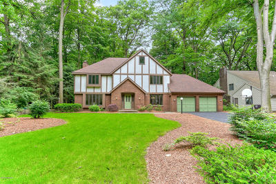 Holland, West Olive Single Family Home For Sale: 240 Portchester Road