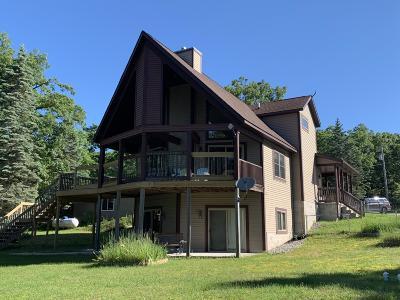 Muskegon County, Oceana County, Ottawa County Single Family Home For Sale: 2307 E Meinert Road