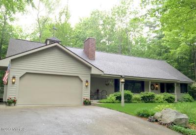 Onekama Single Family Home For Sale: 9250 S Portage Point Drive