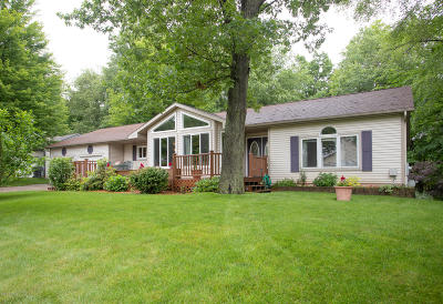 Plainwell Single Family Home For Sale: 11425 Long Point Drive