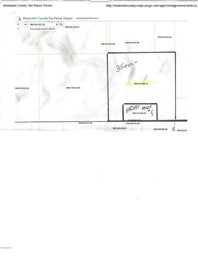 Clinton County, Gratiot County, Isabella County, Kent County, Mecosta County, Montcalm County, Muskegon County, Newaygo County, Oceana County, Ottawa County, Ionia County, Ingham County, Eaton County, Barry County, Allegan County Residential Lots & Land For Sale: P #1 E Sidney Road