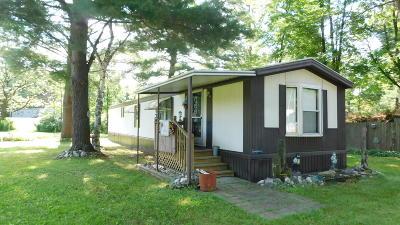White Cloud Single Family Home For Sale: 1615 Sumac Avenue