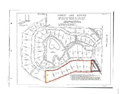 Big Rapids Residential Lots & Land For Sale: Lots 35-40 Forest Lake Drive