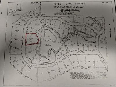 Big Rapids Residential Lots & Land For Sale: Lots 19&20 Forest Lake Drive