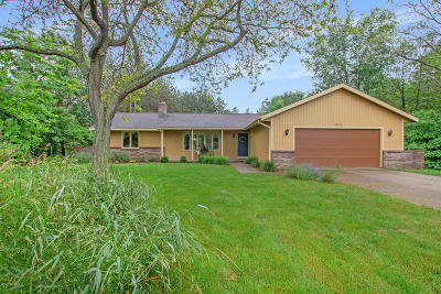 Holland, West Olive Single Family Home For Sale: 4711 Butternut Drive