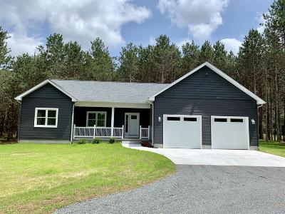 Scottville Single Family Home For Sale: 304 S Quarterline Road