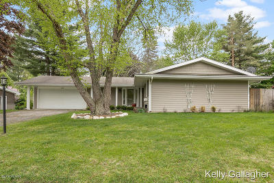Grand Rapids, East Grand Rapids Single Family Home For Sale: 4336 Balfour Drive SE