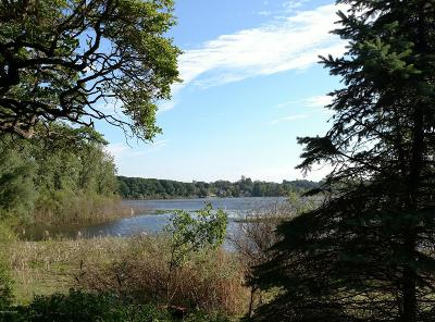 Clinton County, Gratiot County, Isabella County, Kent County, Mecosta County, Montcalm County, Muskegon County, Newaygo County, Oceana County, Ottawa County, Ionia County, Ingham County, Eaton County, Barry County, Allegan County Residential Lots & Land For Sale: 6573 Heron Bay Drive