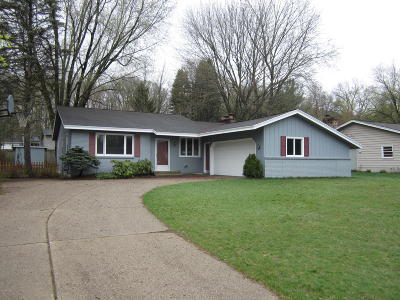Grand Rapids MI Single Family Home For Sale: $249,900