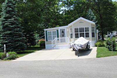 Baldwin Single Family Home For Sale: 9568 S Lazy Lane #44