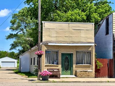 Mecosta MI Commercial For Sale: $19,900
