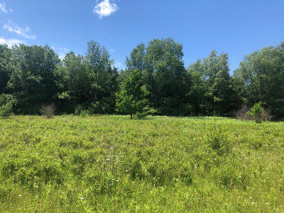 Stanwood MI Residential Lots & Land For Sale: $1