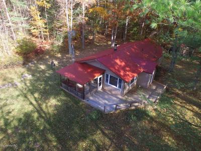 Irons Single Family Home For Sale: 10873 N Hamilton Road
