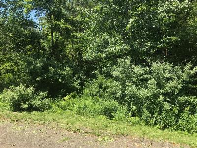 Residential Lots & Land For Sale: 159 McMullen Way