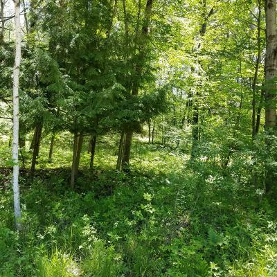 Evart Residential Lots & Land For Sale: 9843 Miramichi