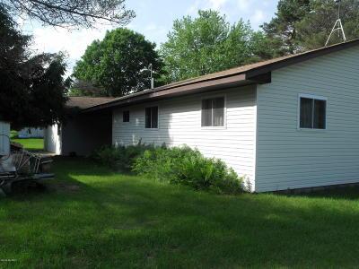 Evart Single Family Home For Sale: 9928 Saddlehorn Drive