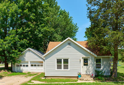 Newaygo Single Family Home For Sale: 297 W Barton Street