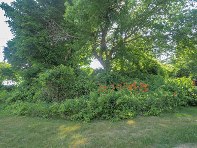 South Haven Residential Lots & Land For Sale: 88 Michigan Avenue