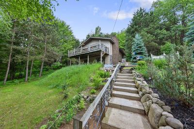 Evart Single Family Home For Sale: 9061 Pontiac Trail