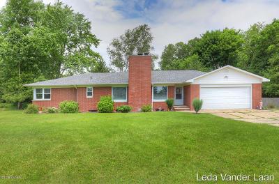 Newaygo Single Family Home For Sale: 495 Quarterline Street