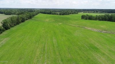 Berrien County, Branch County, Cass County, Calhoun County, Hillsdale County, Jackson County, Kalamazoo County, Van Buren County, St. Joseph County Residential Lots & Land For Sale: 10000 Flowerfield Road