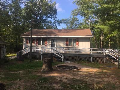 Baldwin Single Family Home For Sale: 11971 S Dutch Elm Avenue