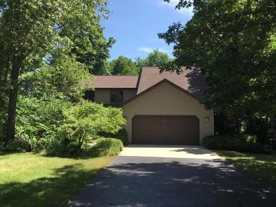 Allegan Single Family Home For Sale: 3666 118th Avenue