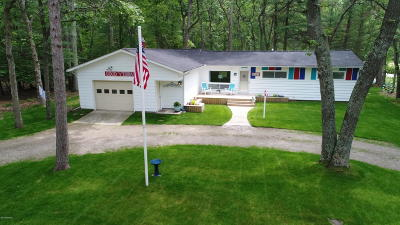 Pentwater Single Family Home For Sale: 6412 Ridge Road