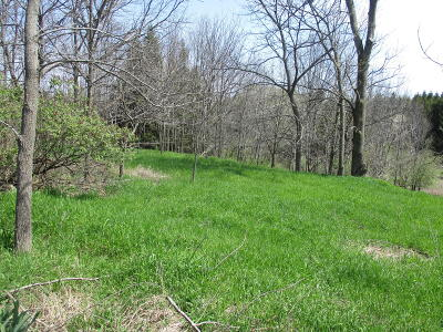 Scottville Residential Lots & Land For Sale: Lot 38 W Hansen Road
