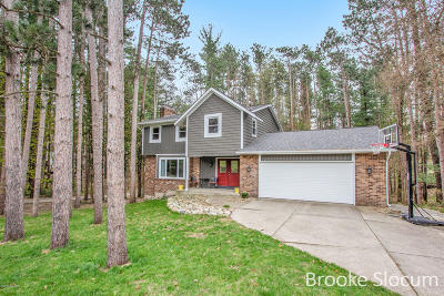 Single Family Home For Sale: 7962 Pine Hollow Drive SE