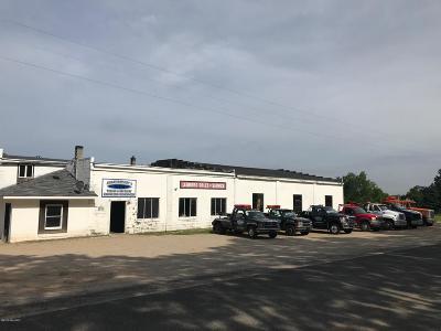 Ludington Commercial For Sale: 3333 S Brye Road