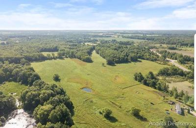 Clinton County, Gratiot County, Isabella County, Kent County, Mecosta County, Montcalm County, Muskegon County, Newaygo County, Oceana County, Ottawa County, Ionia County, Ingham County, Eaton County, Barry County, Allegan County Residential Lots & Land For Sale: W Howard City Edmore Road
