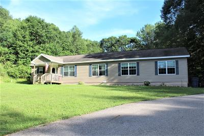 White Cloud Single Family Home For Sale: 4122 W 4 Mile Road