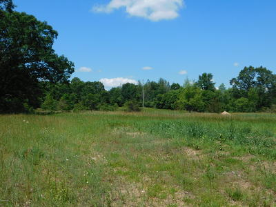 White Cloud Residential Lots & Land For Sale: 559 Tulip Avenue