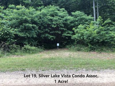 Residential Lots & Land For Sale: Lot 19, Silver Vista Boulevard