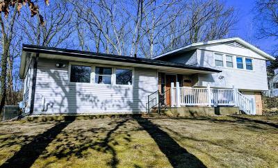 Kalamazoo Single Family Home For Sale: 1314 Greenwood Avenue