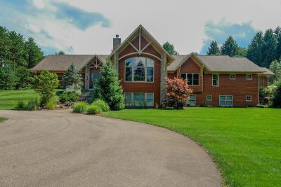 Kalamazoo Single Family Home For Sale: 5655 Q West Avenue