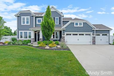 Hudsonville Single Family Home For Sale: 4122 Springmist Drive