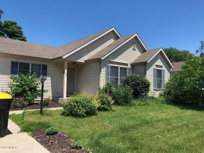 Bridgman Single Family Home For Sale: 4633 Meadowbrook Lane