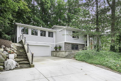 Grand Rapids Single Family Home For Sale: 3512 McCoy Avenue SE