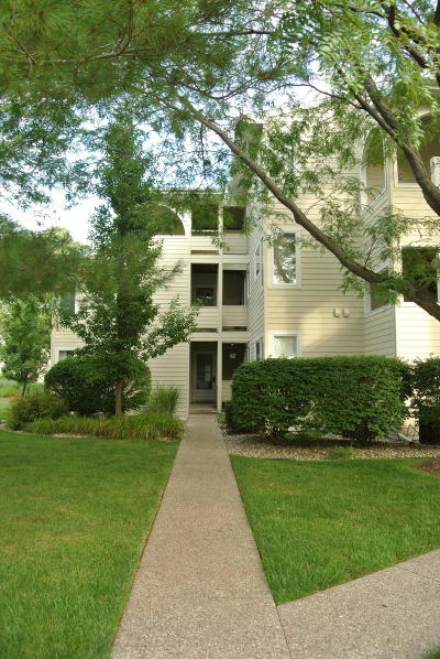 Saugatuck, Douglas Condo/Townhouse For Sale: 983 Lake Street #10