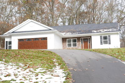 Plainwell Single Family Home For Sale: 137 S Lake Doster Drive
