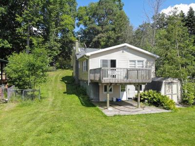 Greenville Single Family Home For Sale: 8765 Lincoln Lake Avenue NE