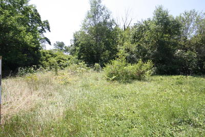 Paw Paw Residential Lots & Land For Sale: 29063 Red Arrow Highway #1