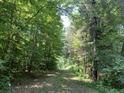 South Haven Residential Lots & Land For Sale: Cr 687