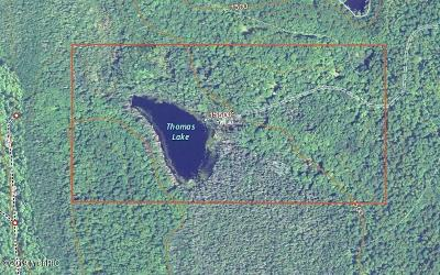 Residential Lots & Land For Sale: 11791 Lake 13 Road
